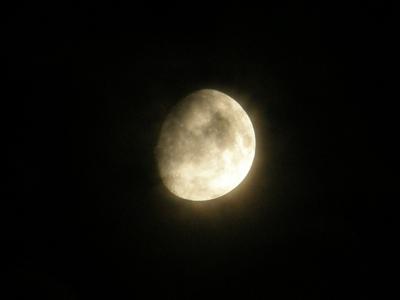 19日のお月さま。雲が掛かってしまいました。
