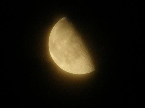 少し朧げな月